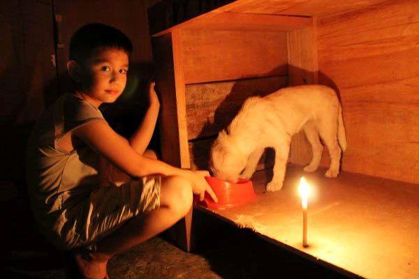 Happy Animal Club, Ken und White Puppy im Dunkeln