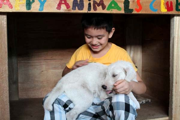 Happy Animal Club, Ken und White Puppy2