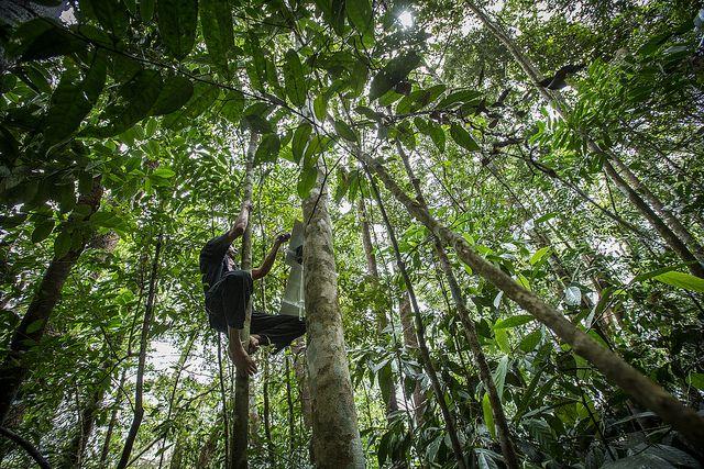 RFC, Sumatra, Installierung von Smartphones, positive nachrichten