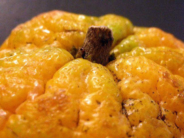 ugly fruit, positive nachrichten