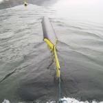 ″Aqua Libre″ – Stromgewinnung aus Bojen ist serienreif