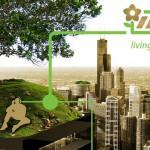 Niederländische Firma gewinnt saubere Energie aus lebenden Pflanzen