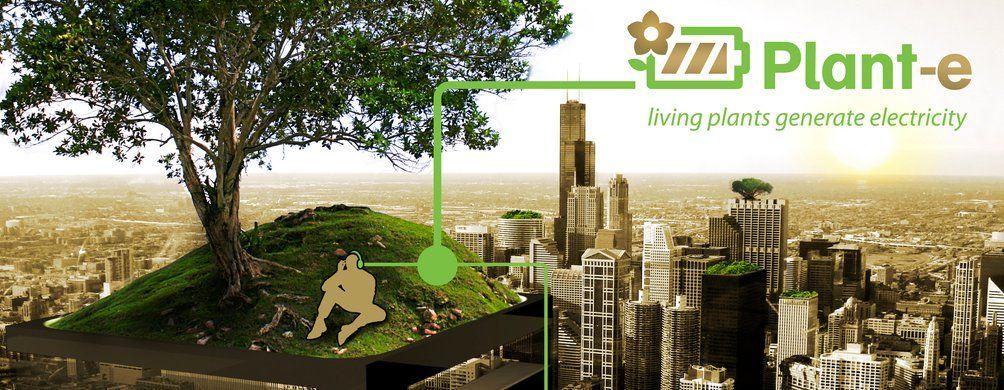 niederl ndische firma gewinnt saubere energie aus lebenden pflanzen gute nachrichten. Black Bedroom Furniture Sets. Home Design Ideas