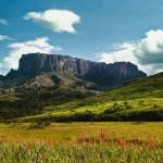Venezuela verbietet gentechnisch verändertes Saatgut