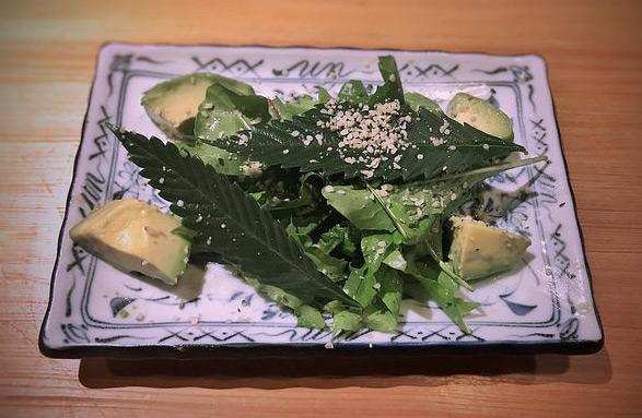 Salat mit Avocado, Hanfblättern und geschälten Hanfsamen. Angerichtet aeinem Teller.