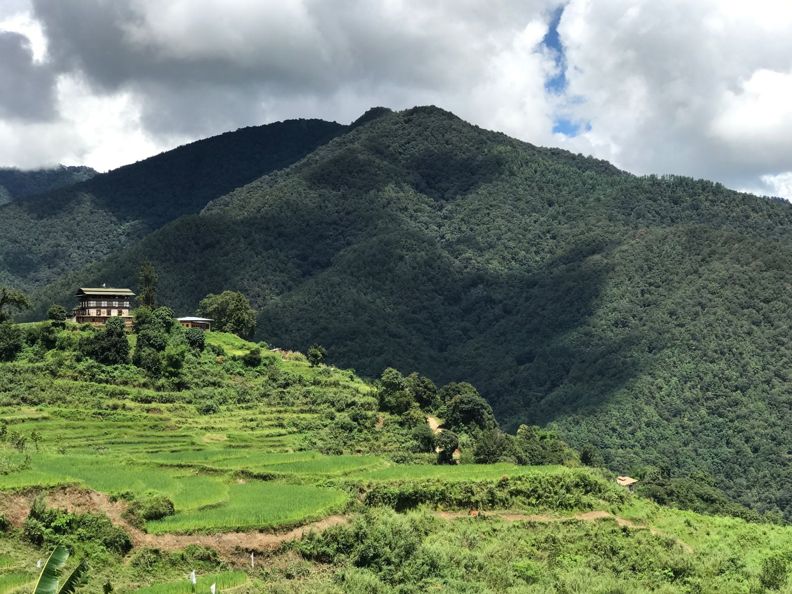 Bauernhaus auf grünen Hügeln in den indischen Bergen im Himalaya-Gebirge