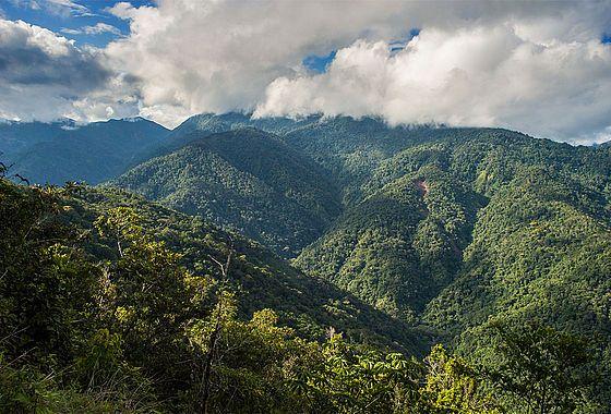 Weiter Blick über den peruanischen Urwald