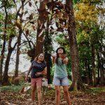 Philippinisches Gesetz: Schulabgänger müssen zehn Bäume pflanzen