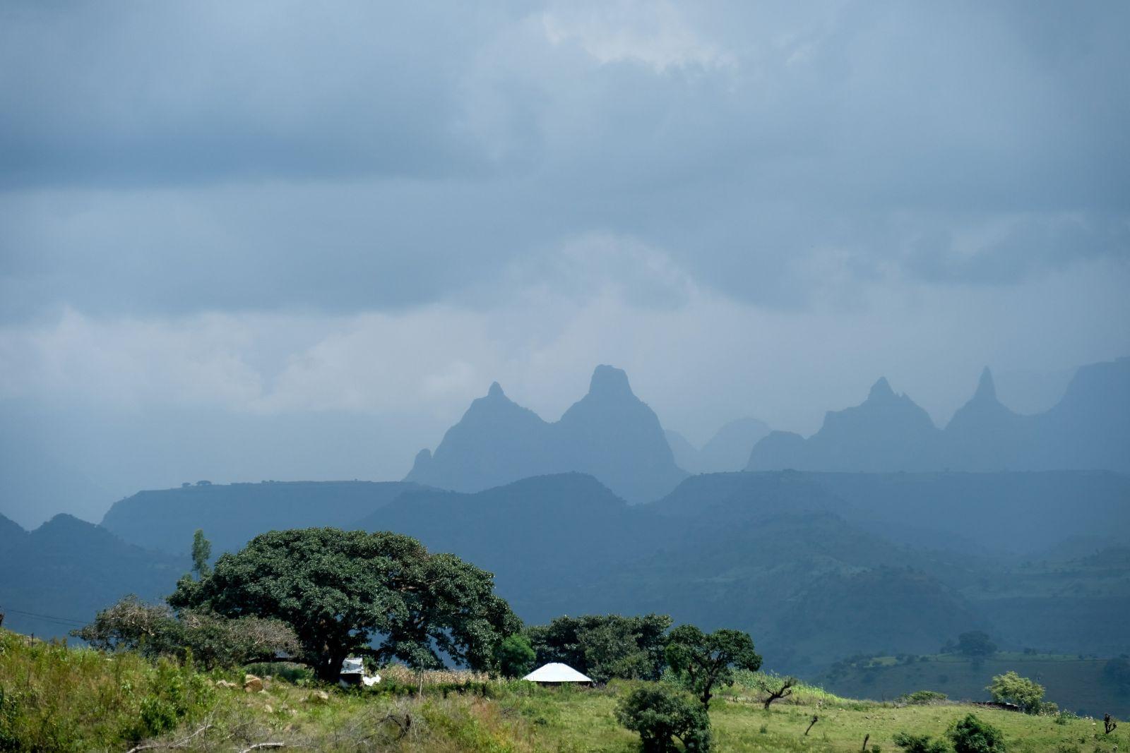 Landschaft von Äthiopien. Man sieht grüne Wiesen, Sträucher und Bäume und berge im Hintergrund