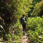Wandern – gesunder Erlebnissport für Groß und Klein