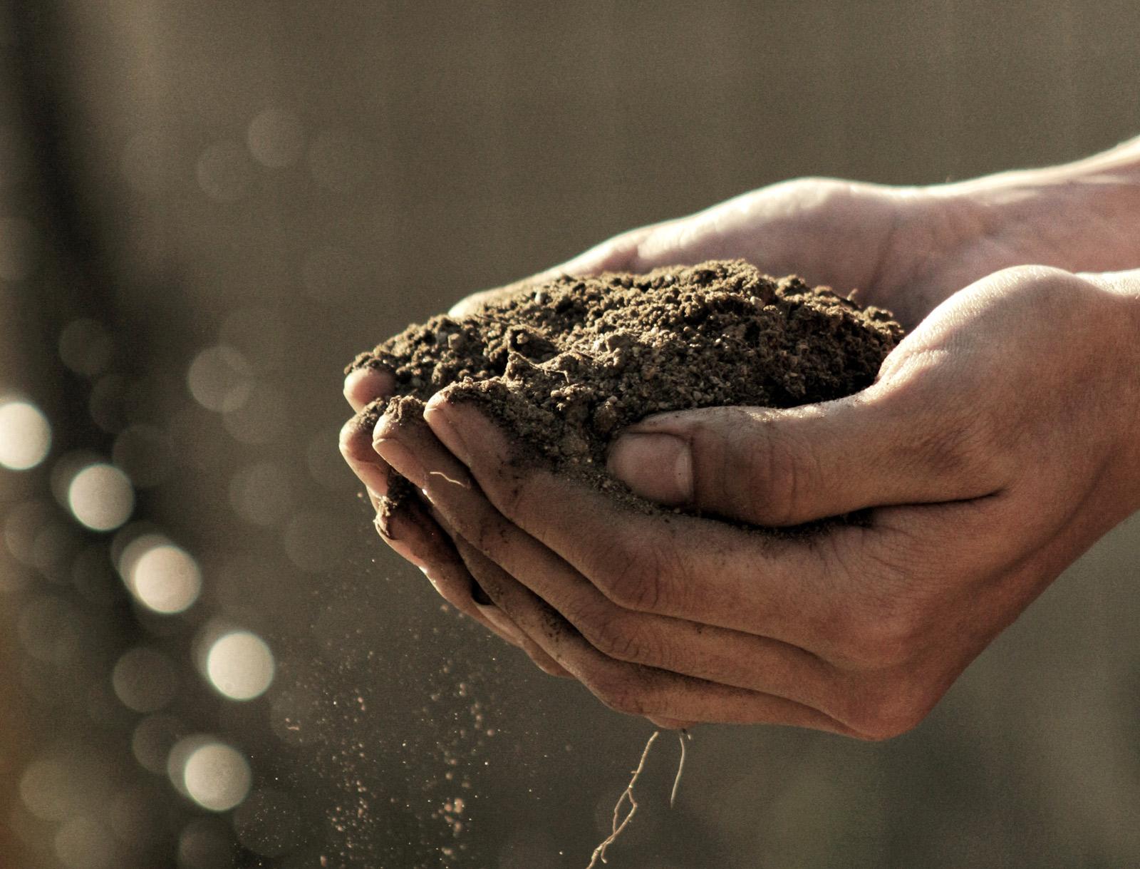 Zwei Hände tragen geschlossen frische braune Erde