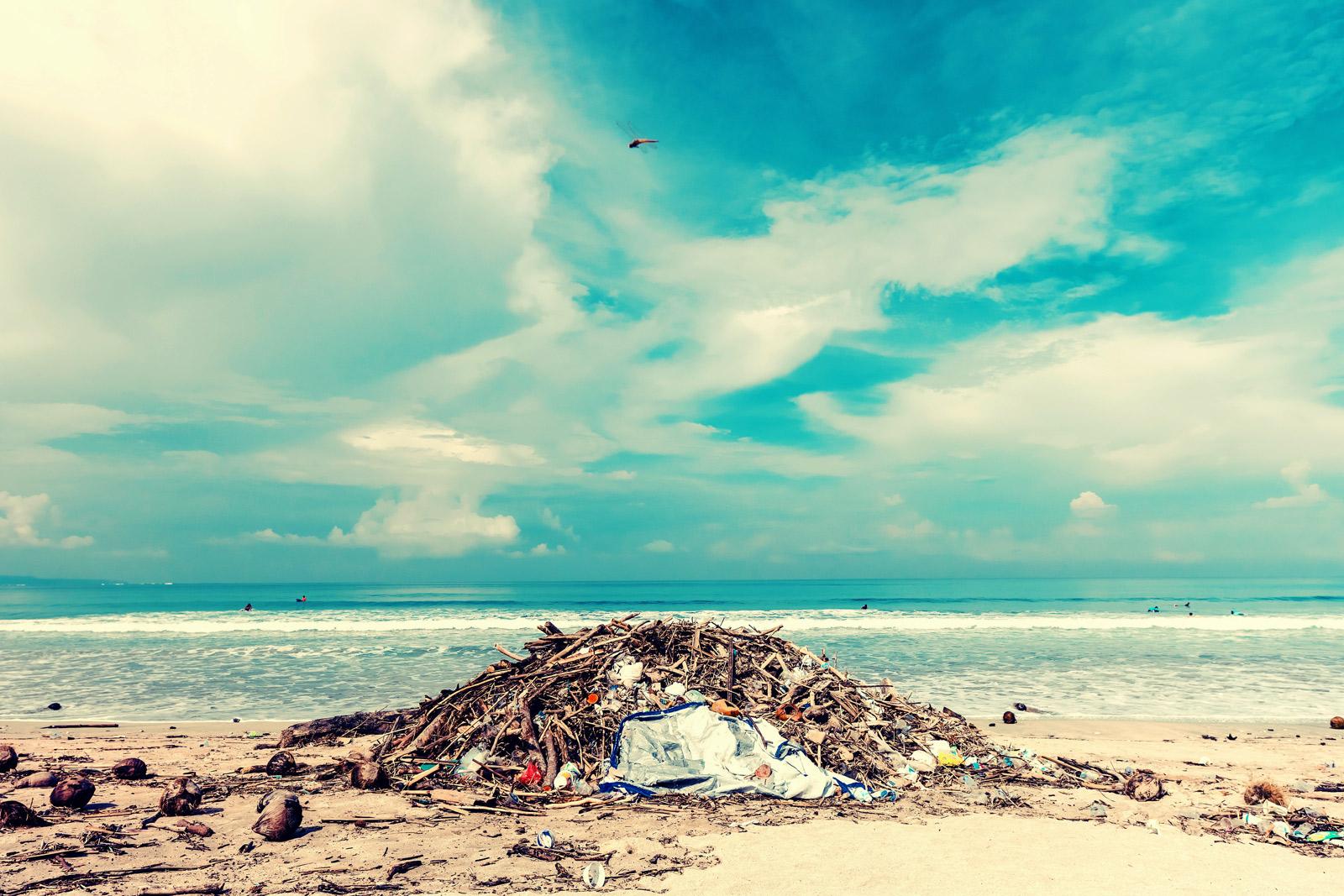 Ein Haufen mit Seegras und Müll , der an einem Strand angeschwemmt zu einem Haufen herumliegt. Im Hintergrund sieht man das Meer und ein einen mit ein paar Wolken durchzogenen blauen Himmel.